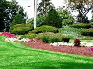 Best Landscapers Plano Dallas Landscaping Company